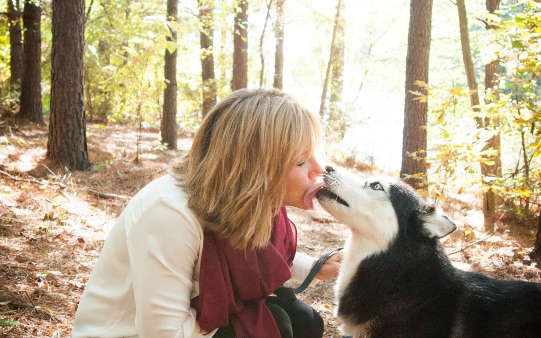 Needing Pet Care- Panic or Perfect